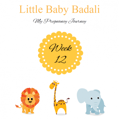 Little Baby Badali: My Pregnancy Journey ~ Week 12