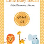Little Baby Badali: My Pregnancy Journey ~ Week 13