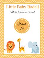 Little Baby Badali: My Pregnancy Journey ~ Week 14