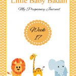Little Baby Badali: My Pregnancy Journey ~ Week 17