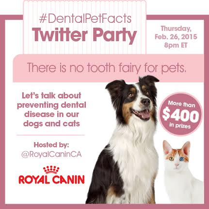 DentalPetFacts-Twitter-Party
