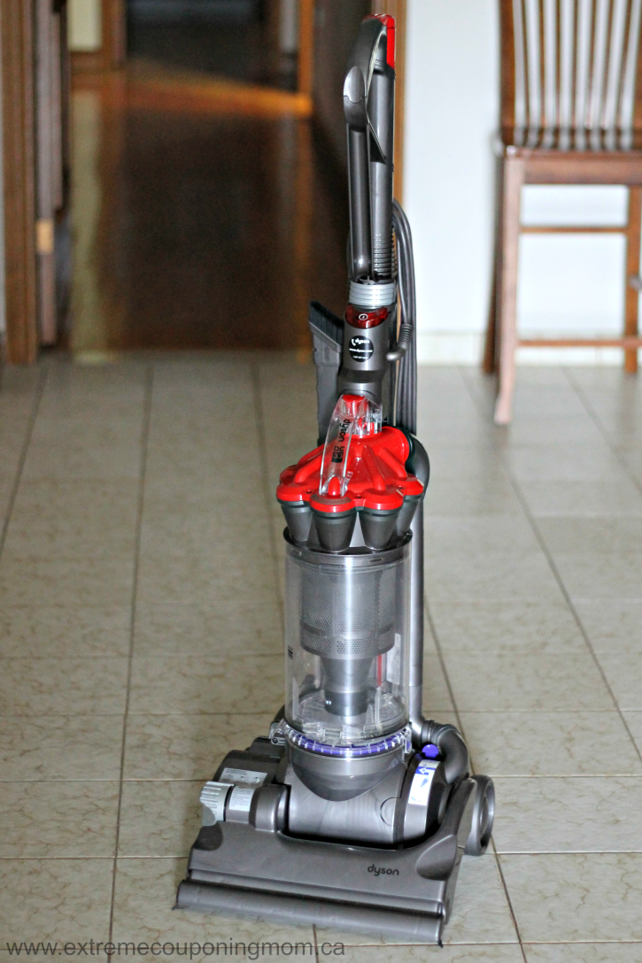 Get Dog Smell Out Of Dyson Vacuum