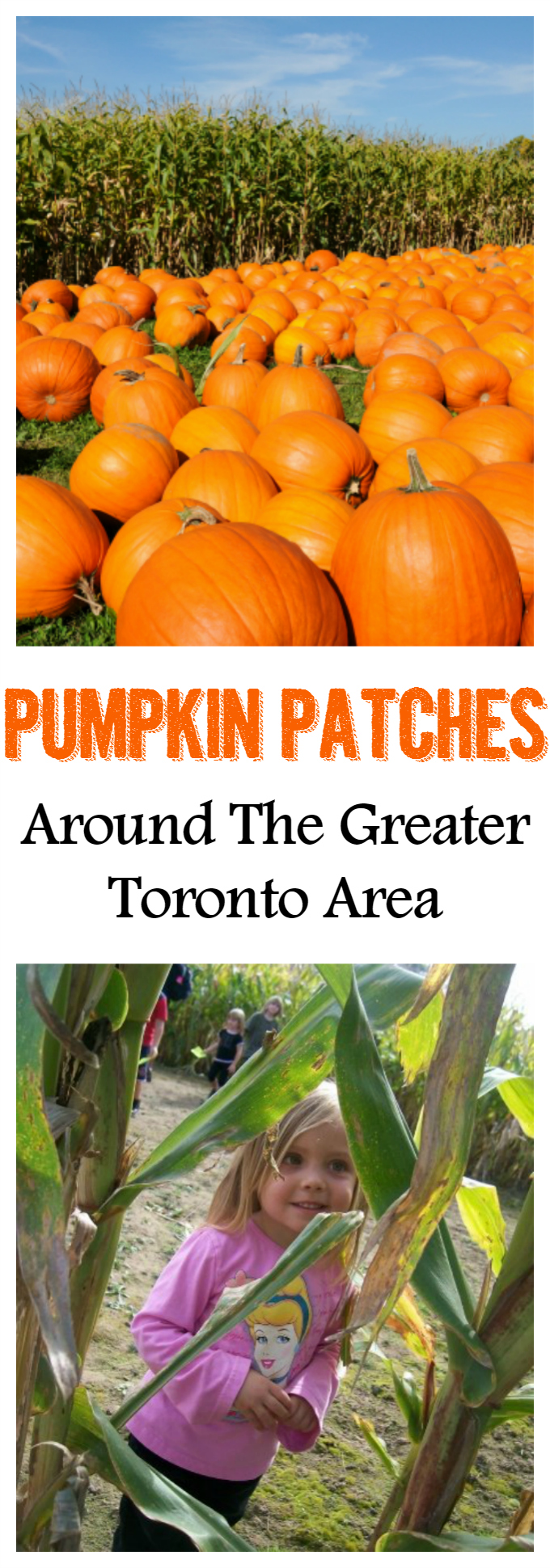 pumpkin patches toronto_pinterest