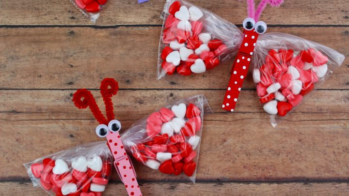 Butterfly Valentines Day Treat Bags