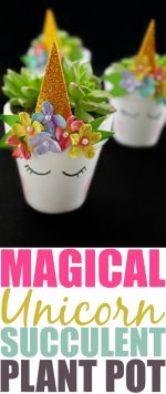 DIY Magical Unicorn Succulent Plant Pot