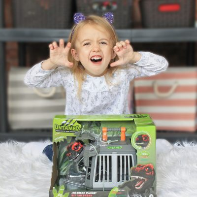 My Top WowWee Holiday Gift Ideas