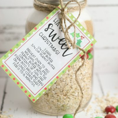 Handmade Gift Idea: Monster Cookie Mix In A Jar