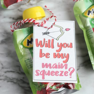 Will You Be My Main Squeeze Valentine Applesauce Pouches
