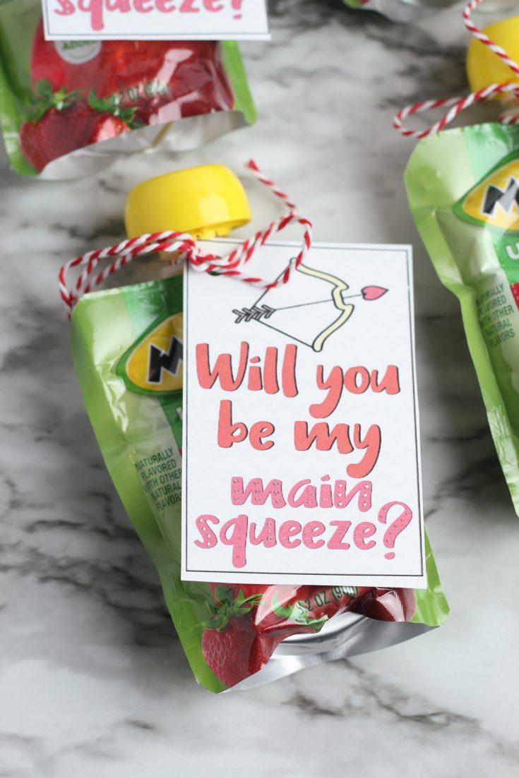 Valentine's Day Applesauce Pouches