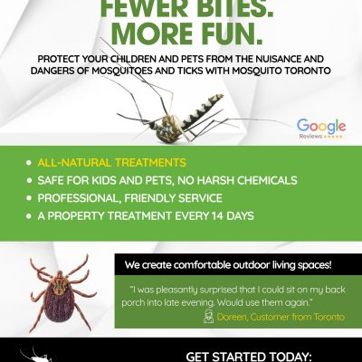 A Tranquil Summer In Our Backyard Thanks To Mosquito Toronto