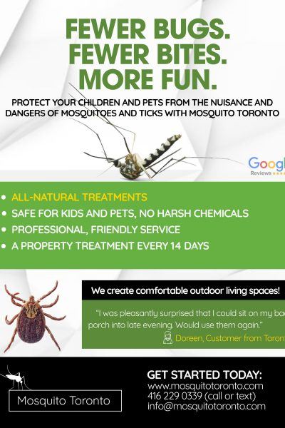 Mosquito Toronto