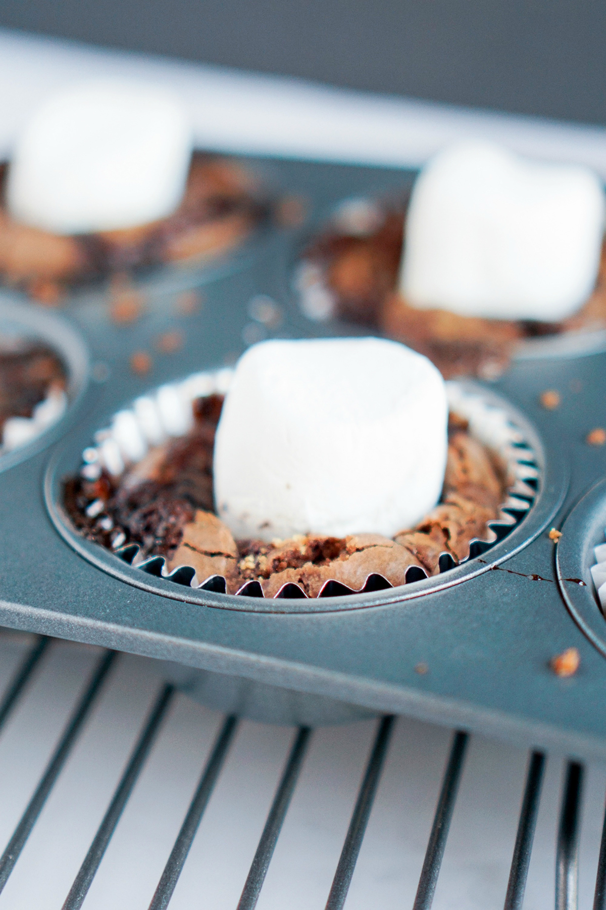 The Best S'Mores Cupcakes
